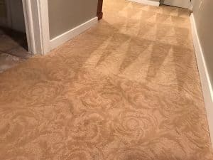 carpet cleaning patterned carpet