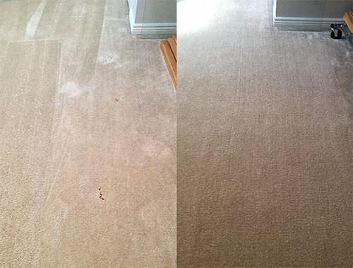 Carpet repair carpet stain removal