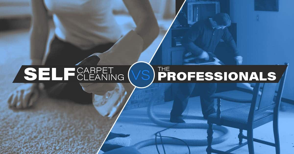 Self carpet cleaning versus professional carpet cleaning