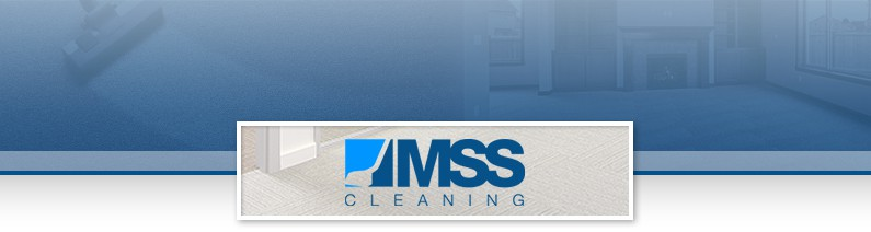 MSS Cleaning Header