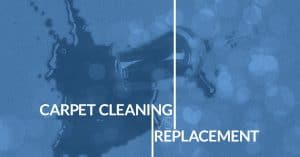 carpet cleaning or replacement how to choose