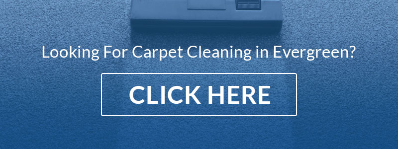 evergreen carpet cleaning call to action