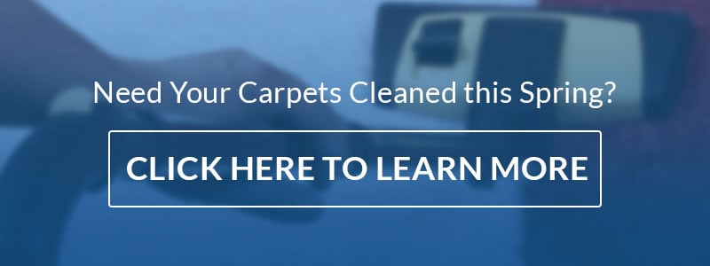 need carpet cleaning call to action