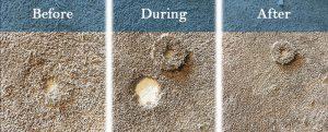 Carpet patch damaged carpet from pet damage