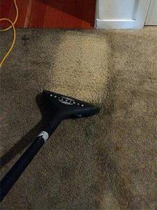 clean streak on dirty carpet