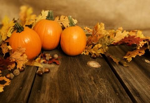 pumpkins and leaves in a fall seasonal theme