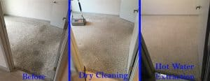 Dry Carpet Cleaning vs. Hot Water Extraction Carpet Cleaning Denver