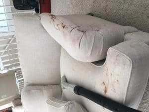 before upholstery cleaning on sofa