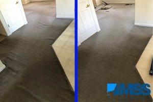 Carpet Stretching Denver