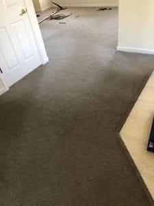 After Carpet Stretching in Denver