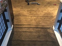 Golden carpet stretching and repairs