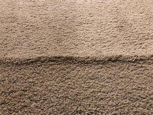 wrinkled tan carpet