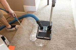Pet odor carpet cleaning Denver CO