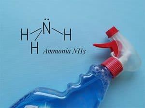 Ammonia in spray bottle