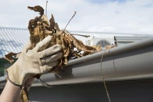 clean gutters to prevent water damage to basement