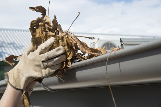 remove leaves and debris from gutters