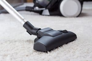using a vacuum to remove pet hair from carpet